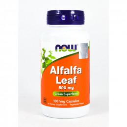 Suplement Prozdrowotny Now Foods Alfalfa Leaf 500mg 100kaps