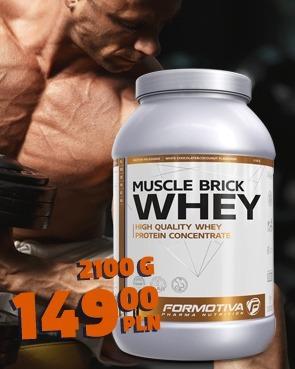 Formotiva Brick Whey