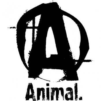 Animal UNIVERSAL